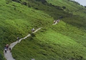 西登山道コース