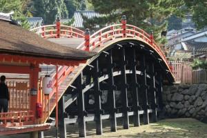 ⑨重要文化財 反橋0661