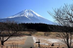 朝霧高原の富士山1142