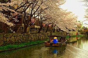 近江八幡堀と舟HDR絵画